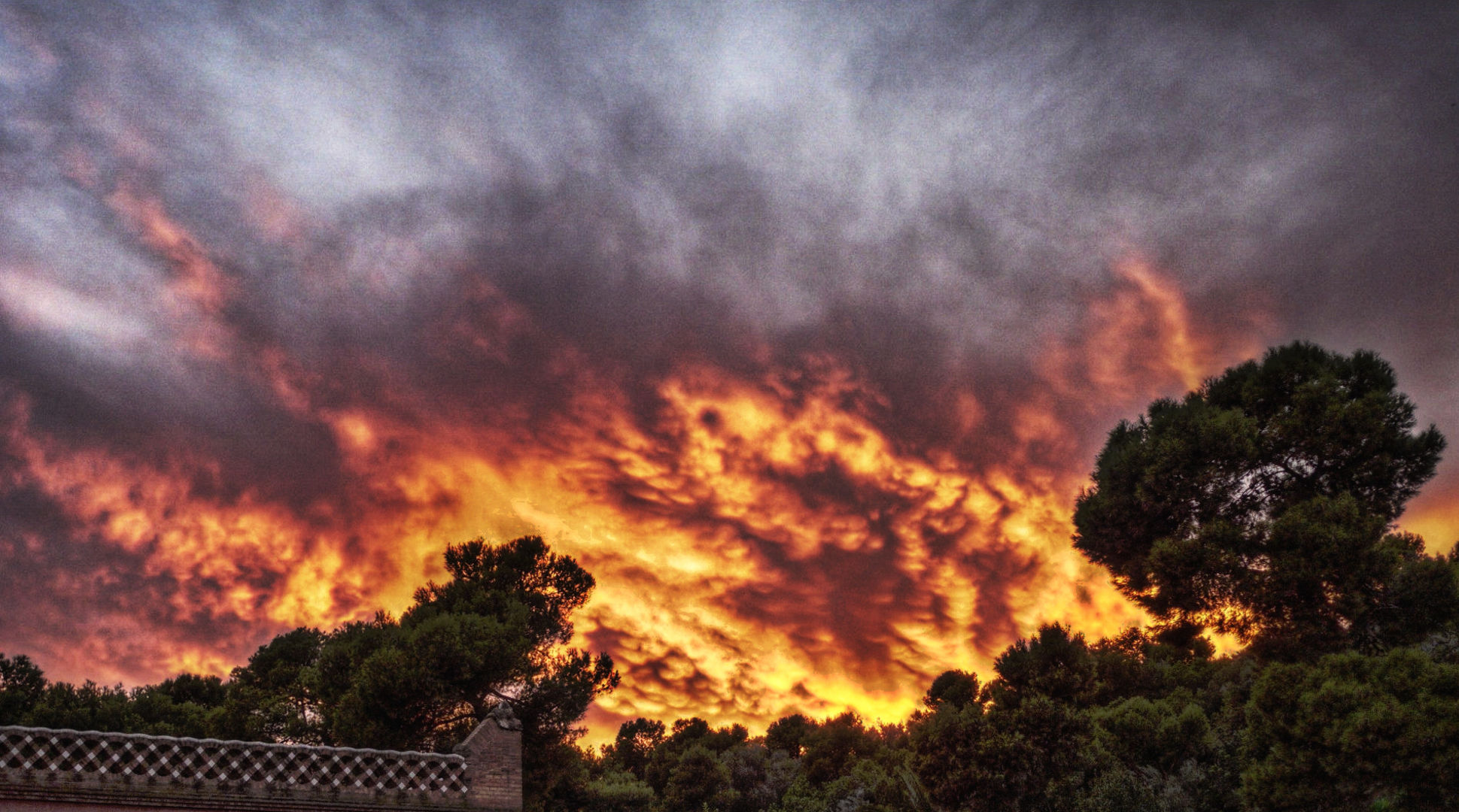fuego guell